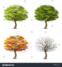Decorative Pine Trees Trees Four Seasons Realistic Decorative Icons Stock Vector