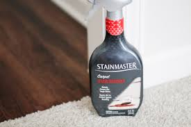 stainmasters carpet upholstery cleaning homeownership thus far my stain remover secret weapon