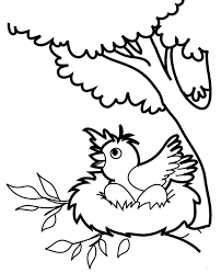 bird coloring pages 13 print color free