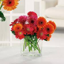 fruit bouquet tulsa gerbera bouquets tulsa florist westside flowers gifts