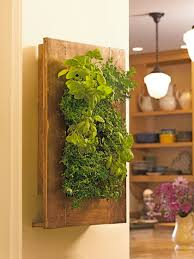 vertical wall garden with stainless steel and mango wood