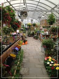 garden of eden flower shop greenhouse u0026 gift shop ross plants u0026 flowers orefield pa