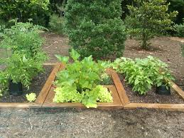 a simple herb garden design for the perfect appetizer u2014 unique