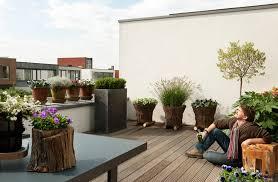 flieder balkon balkon terrasse blumenbüro newsroom part 3