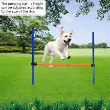 Pet Dogs Outdoors Games Exercise Training Equipment Agile Barrier