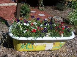 the best fall container gardening ideas on pinterest plants potted