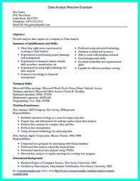 Sample Resume For A Business Analyst by Data Analyst Resume Will Describe Your Professional Profile
