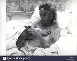 Jane Mansfield Jayne Mansfield Actress Stock Photos U0026 Jayne Mansfield Actress