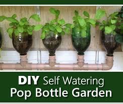 Diy Self Watering Herb Garden Diy Self Watering Pop Bottle Garden Jpg