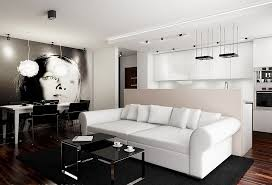 Living Room Ideas For Small Apartments Living Room Modern Minimalist Small Apartment Living Room Idea