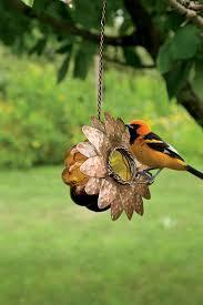 42 best backyard habitat u0026 wildlife images on pinterest bird