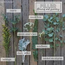 Flowersbybillbush Montreal Postal Code Map - the 25 best veronica flower pictures ideas on pinterest
