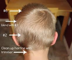 haircut with 12 clippers how to do a boy s haircut with clippers boy hair haircuts and