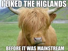 Cow Memes - hipster cow memes quickmeme
