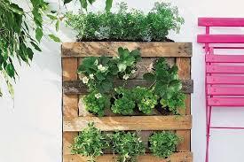 Vertical Garden For Balcony - how to build a pallet vertical garden and a diy plastic wall garden