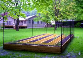 Backyard Landscaping Ideas For Dogs Bedroom Marvelous Backyard Fence Ideas Home Design Amazing