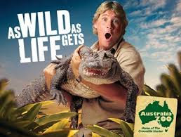 best cv exles australia zoo february 2013 conservation education presenter intern spring