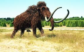 woolly mammoth mammuthus primigenius recycled materials