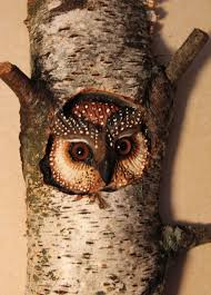 carved wood wall custom made owl carving wood wall by donna maries