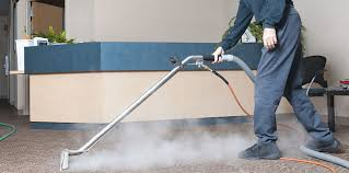 probeesteam eco professional steam cleaning in dubai