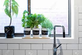 Kitchen Furnishing Ideas by Counter Flush With Window Sill Saveemail Awe Inspiring Window