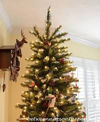 Christmas Decorations Without Lights by How To Repair Or Fix A Blown Fuse On Your Christmas Tree Lights