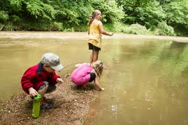 summer camps chattanooga audubon society