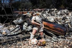 California Wildfire Cat by California Photos Of Devastation Caused By Bluecut And Clayton Fires