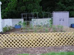 dress up straw bale garden with lattice fence can you grow on