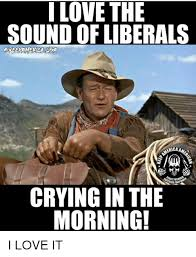 Cry Baby Meme - 25 best memes about liberal cry baby liberal cry baby memes