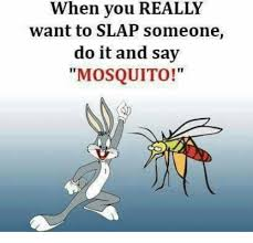 Mosquito Memes - when you really want to slap someone do it and say mosquito meme