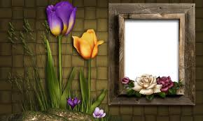 flower photo frames wallpaper android apps on google play