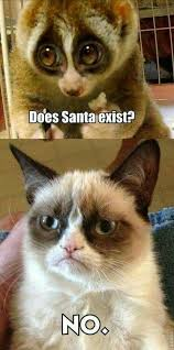9 Best Grumpy Cat Memes - 27 grumpy cat funny memes page 5 quotes reviews