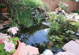 oasis in the backyard homeowners find enjoyment peace with ponds