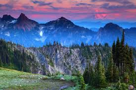 Washington mountains images Usa scenery mountains mt rainier washington fir nature photos jpg