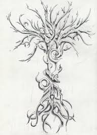 amazing tree of photos pictures and sketches