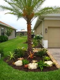 Florida Landscape Ideas by Landscaping With Bromeliads Multi Foxtail Bromeliad Gardening