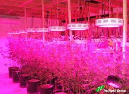 led marijuana grow lights led grow light projects led aquarium light projects