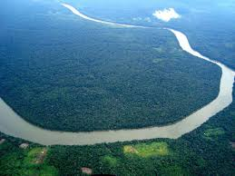 Amazon River On World Map by The Amazon Rainforest