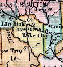 Florida County Maps by Suwannee Florida County Maps Stock Vector Art 182242369 Istock