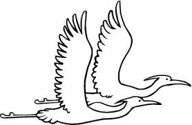flying crow coloring pages
