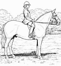 realistic horse coloring pages bestofcoloring