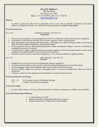 Best Resume Objective Statements Examples Of Resumes Good Resume Bad Example Choose 14 Great