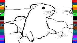 animal coloring pages how to draw a groundhog drawing and