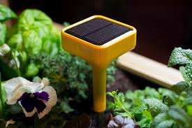 The Smart Garden by 7 Crazy Awesome Gadgets We Found At Ces 2015 Venturebeat