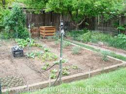 Garden Layout Vegetable Garden Layout
