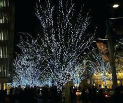 outdoor christmas tree lights large bulbs outdoor christmas tree lights amazing design outdoor tree lights