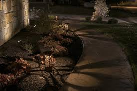 Landscape Tree Lights Attraction Lights