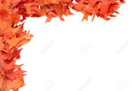 thanksgiving boarders corner border of colorful red oak leaves stock photo picture and