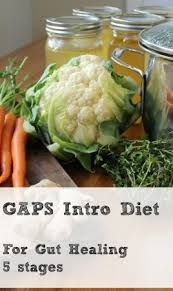 the gaps introduction diet stages for faster healing through